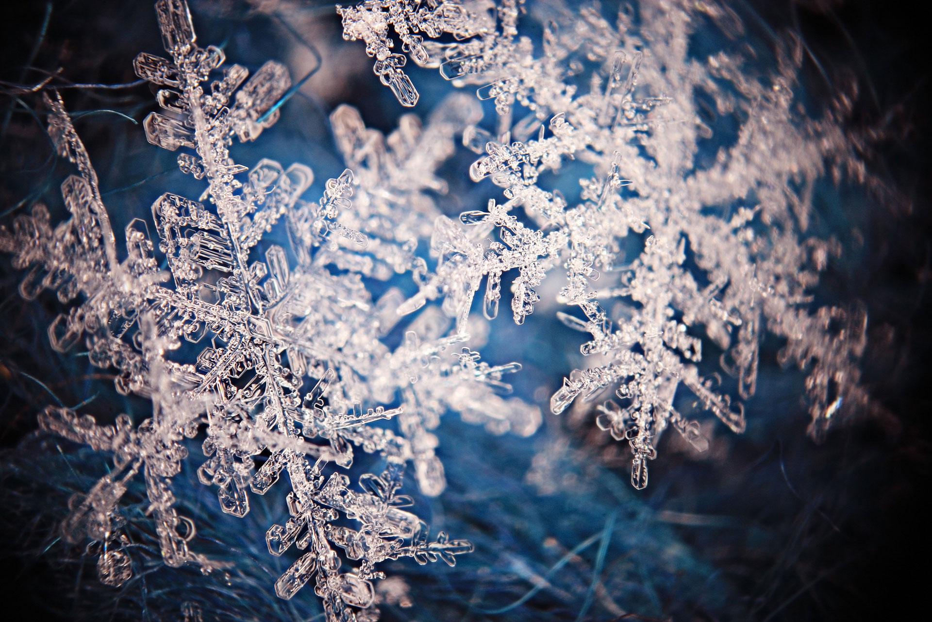 Jak fotit sněhové vločky